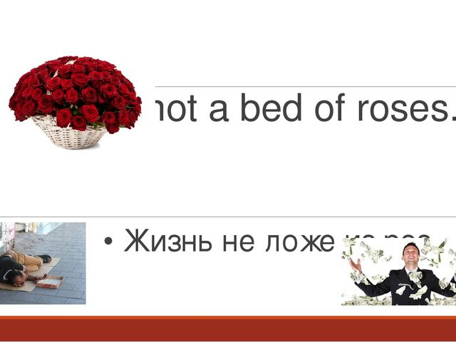an essay on life is not a bed of roses Short essay on life article shared by life is beautiful but not always easy, it has problems, too  life has not been a bed of roses for them.
