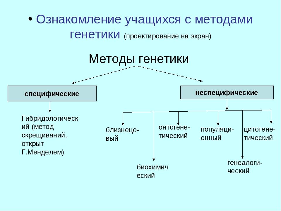 Ознакомление учащихся с методами генетики (проектирование на экран) Методы г...