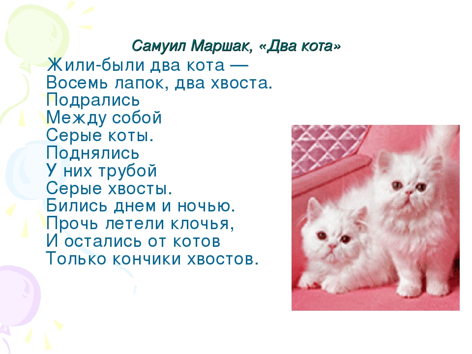 стихи пиар котят бренда