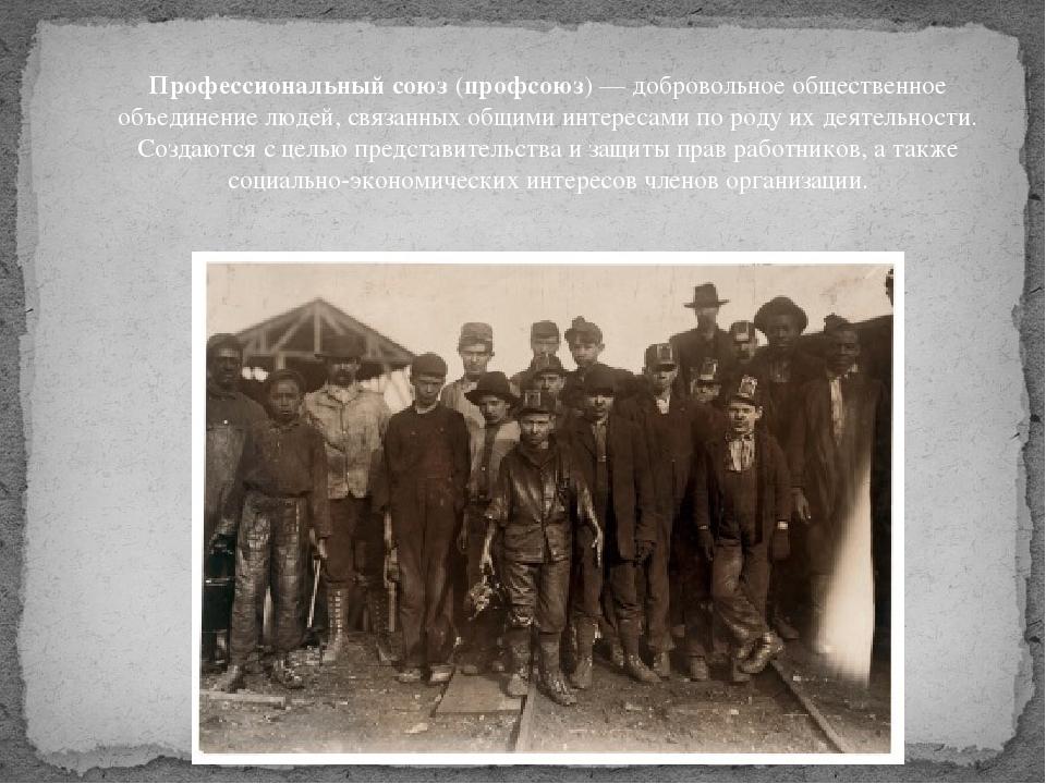 Профессиональный союз(профсоюз)— добровольноеобщественное объединениелюде...