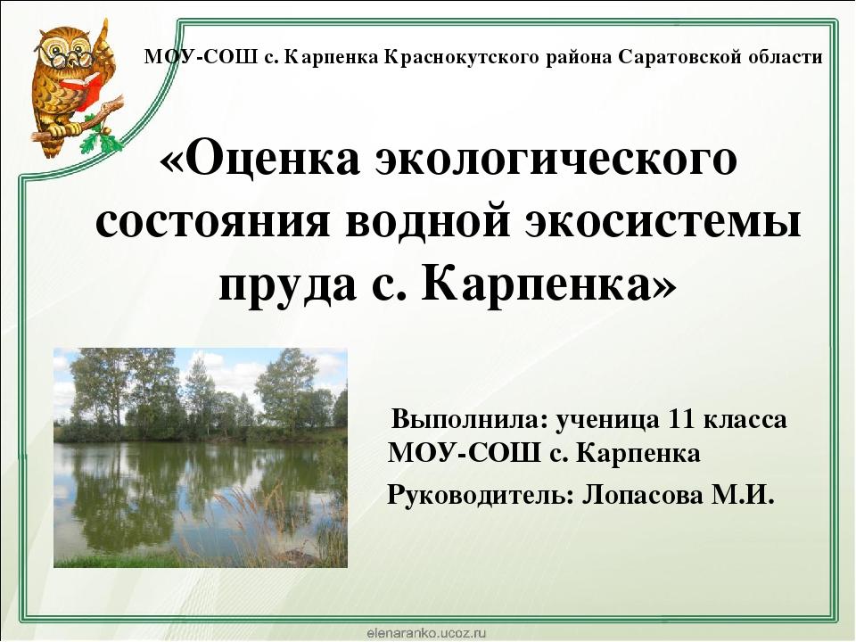 Экологическая экспертиза саратов