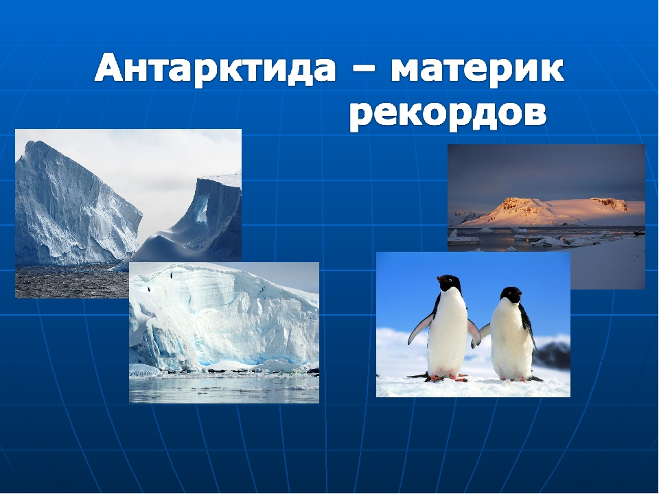 Картинка с надписью антарктида