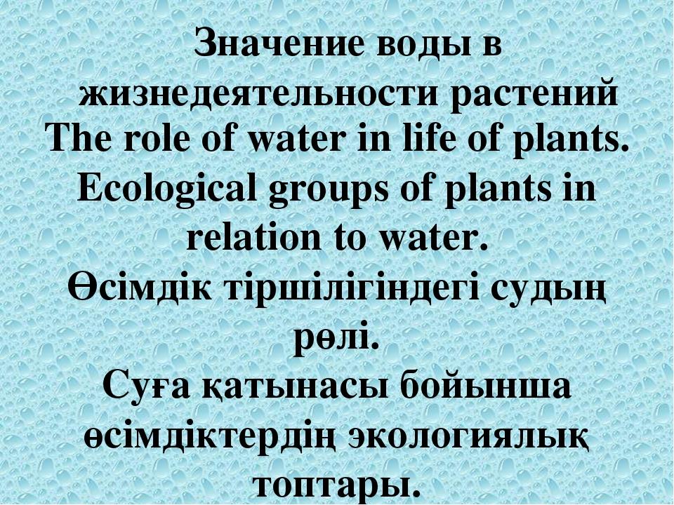 Значение воды в жизнедеятельности растений The role of water in life of plant...