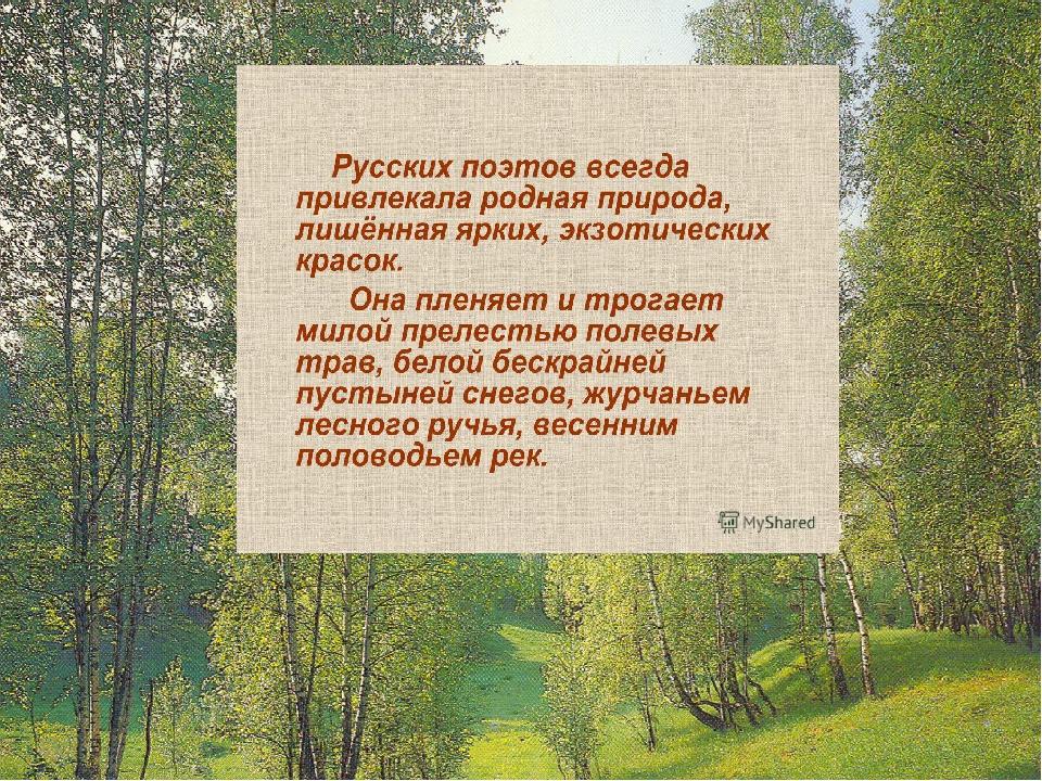 7 класс стихи русских поэтов 19 века ванной ветвями