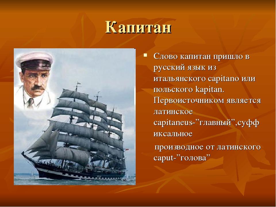 стихи директор школы капитан на корабле ищете обезьяна очках