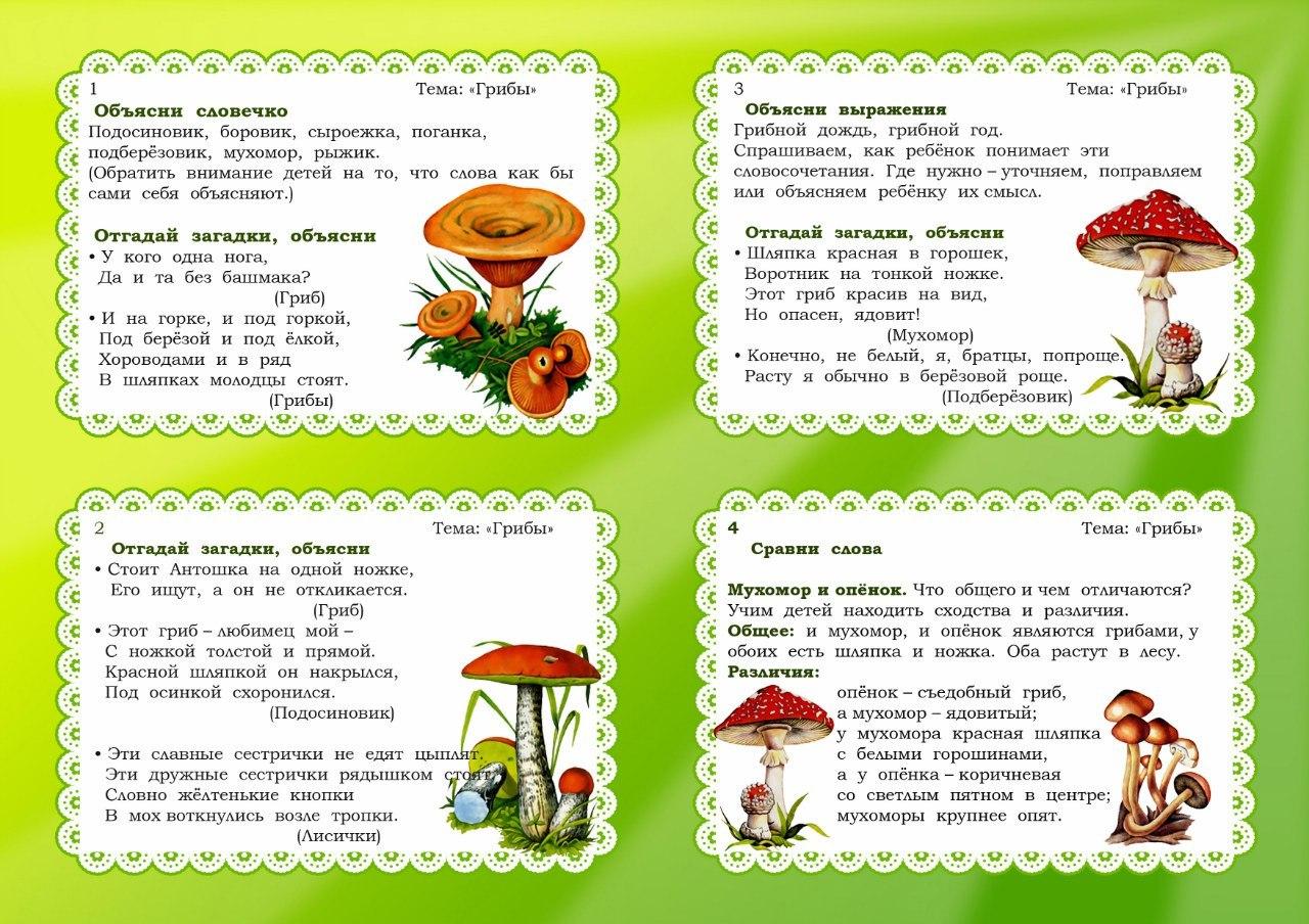 Картотека грибов в картинках для детей