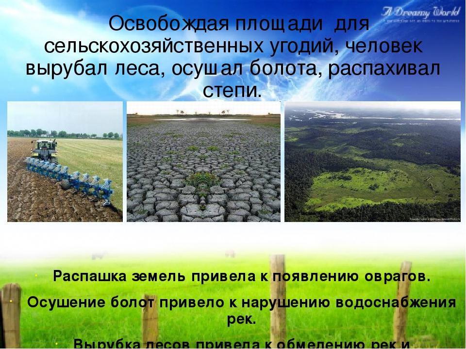 Освобождая площади для сельскохозяйственных угодий, человек вырубал леса, ос...