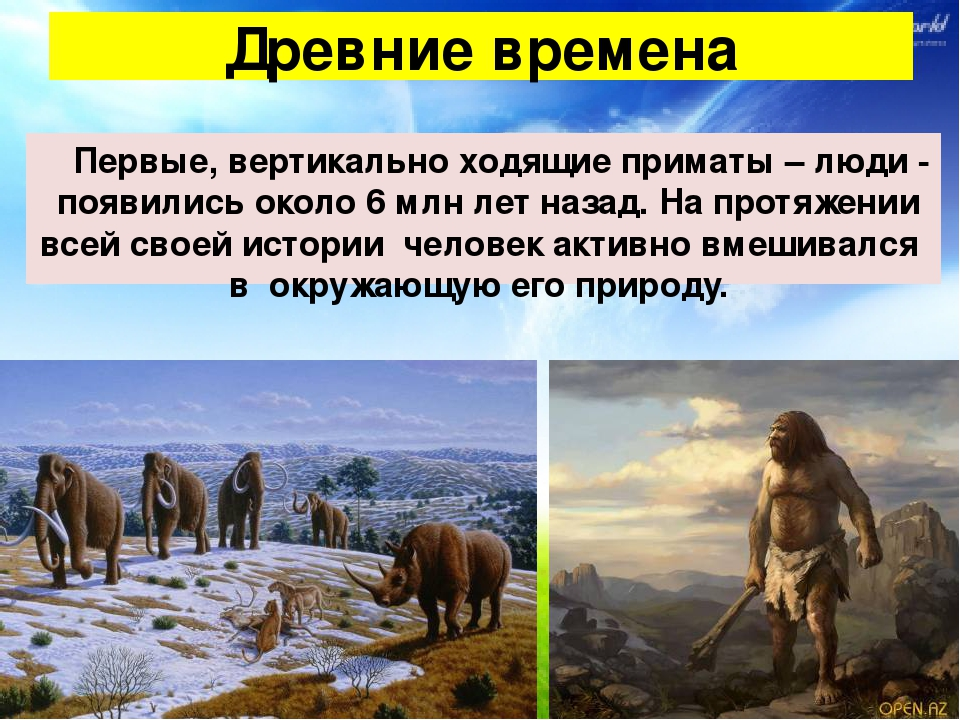 Первые, вертикально ходящие приматы – люди - появились около 6 млн лет назад...