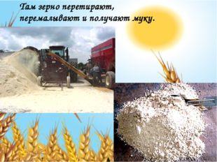Там зерно перетирают, перемалывают и получают муку.