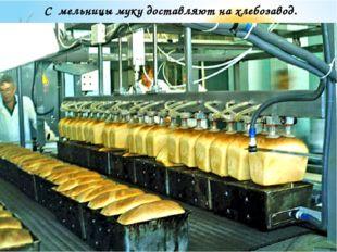 С мельницы муку доставляют на хлебозавод.