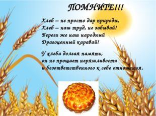 ПОМНИТЕ!!! Хлеб – не просто дар природы, Хлеб – наш труд, не забывай! Береги