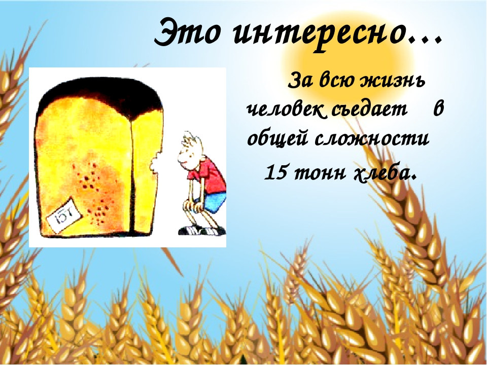 За всю жизнь человек съедает в общей сложности 15 тонн хлеба. Это интересно…