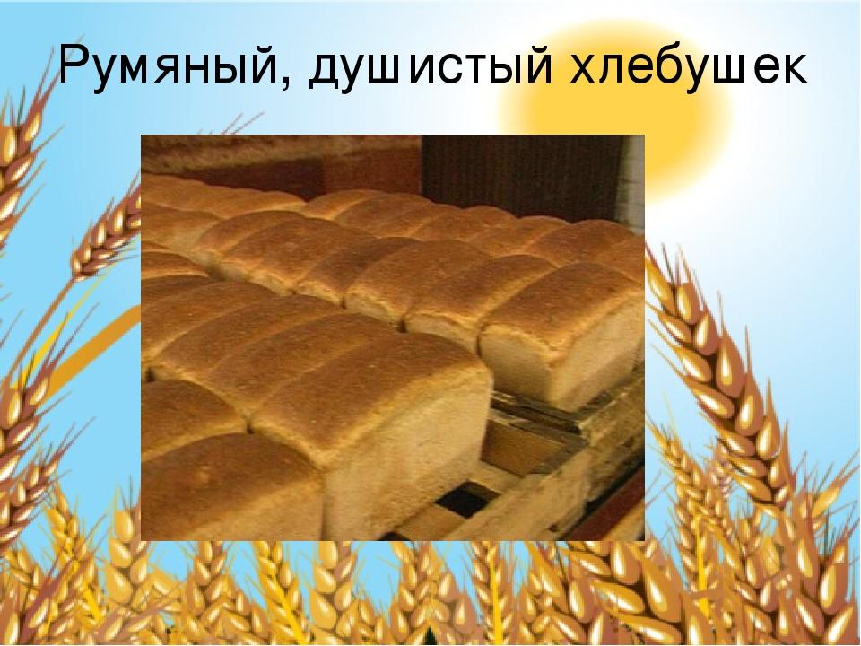 Румяный, душистый хлебушек