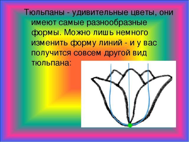 Тюльпаны - удивительные цветы, они имеют самые разнообразные формы. Можно лиш...