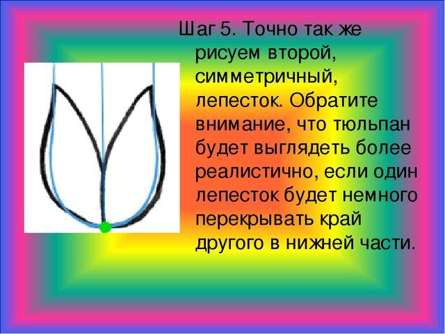 Шаг 5. Точно так же рисуем второй, симметричный, лепесток. Обратите внимание,...