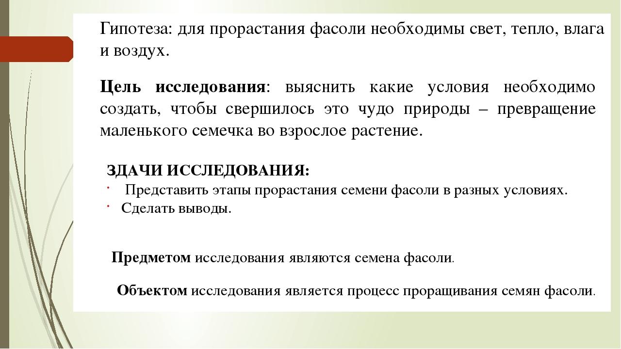 Бизнес план по выращиванию фасоли бизнес план по катку