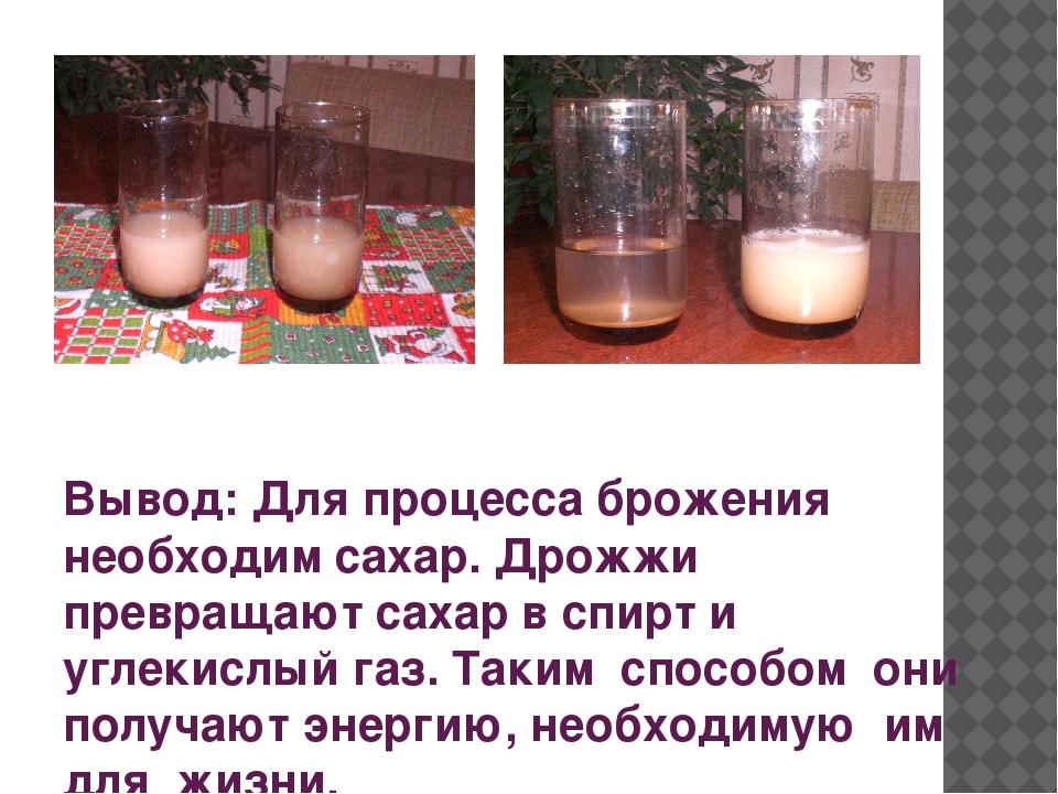 Как сделать брагу для самогона из сахара и дрожжей спиртовых