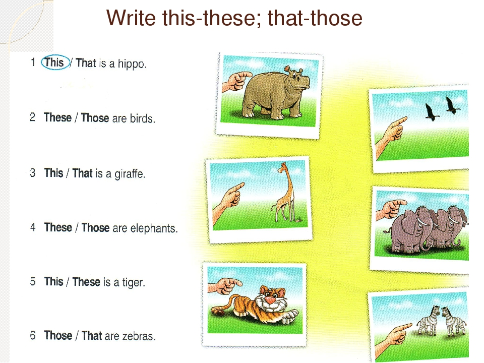 Possessive pronouns exercises Упражнения Grammarteicom