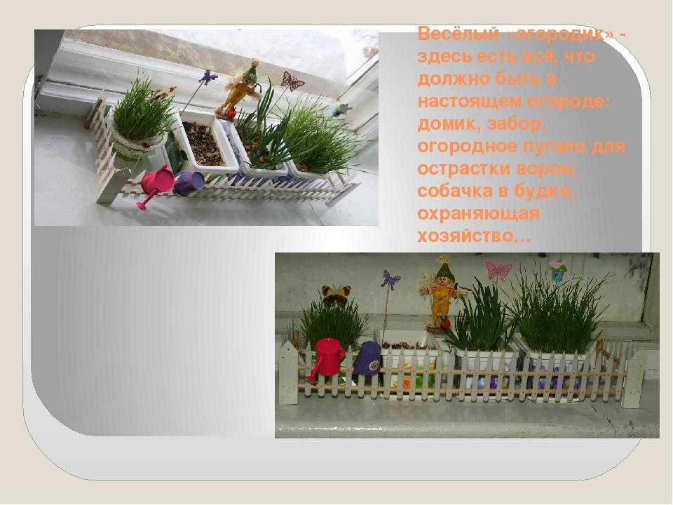 Весёлый «огородик» - здесь есть всё, что должно быть в настоящем огороде: дом...