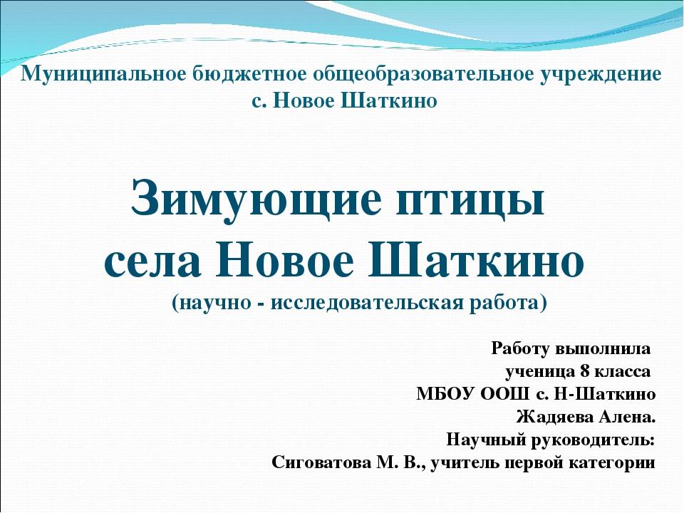 Муниципальное бюджетное общеобразовательное учреждение с. Новое Шаткино Зимую...