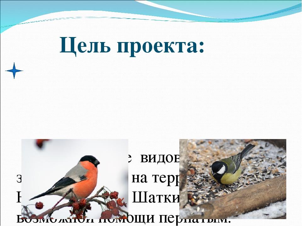 обследование видового состава зимующих птиц на территории сел Новое и Старое...