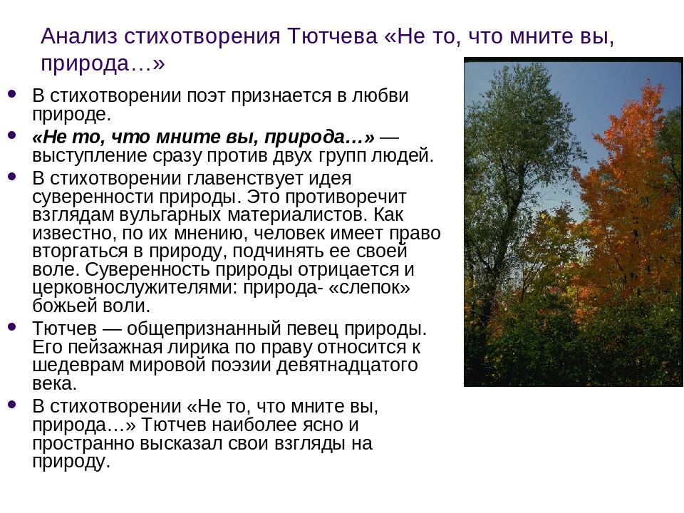 Анализ стихотворения Тютчева «Не то, что мните вы, природа…» В стихотворении...