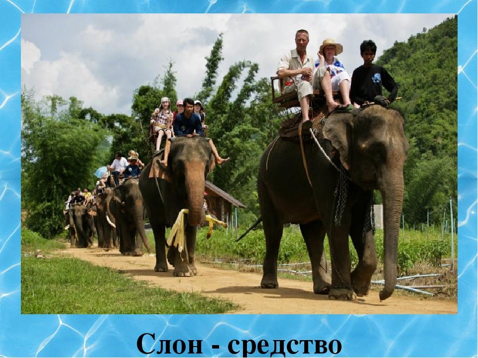 Слон - средство передвижения