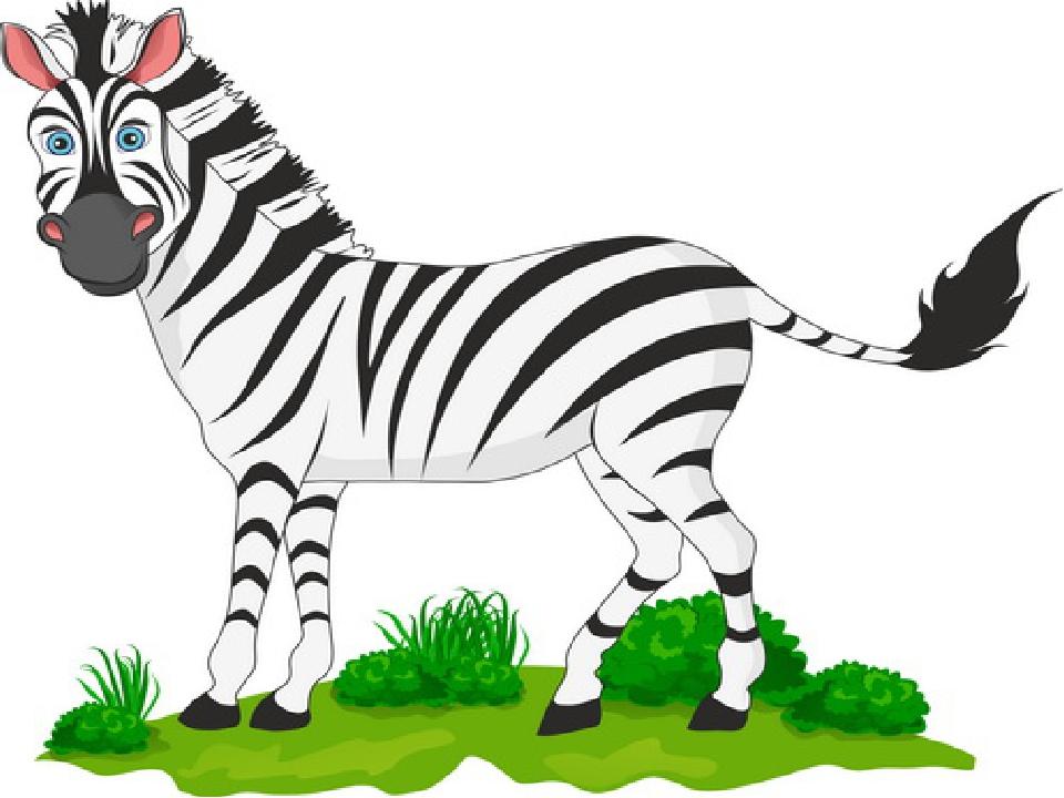 Открытка, картинка зебра для детей