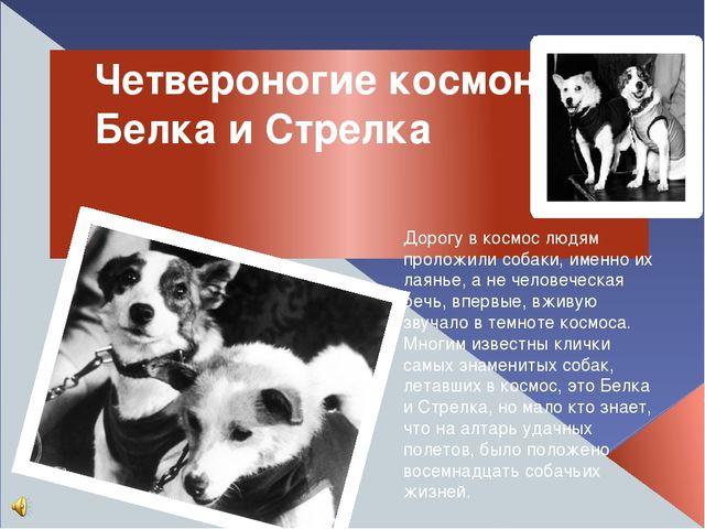 Четвероногие космонавты Белка и Стрелка Дорогу в космос людям проложили собак...