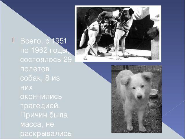 Всего, с 1951 по 1962 годы, состоялось 29 полетов собак, 8 из них окончились...