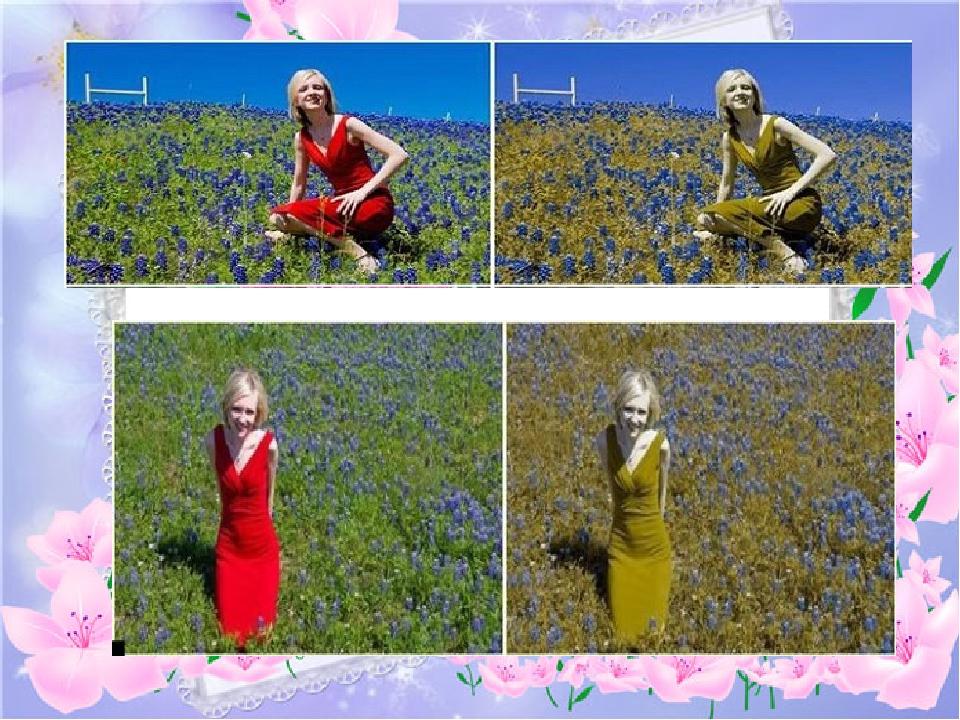 как видят мир дальтоники фото крупные махровые густо-розовые