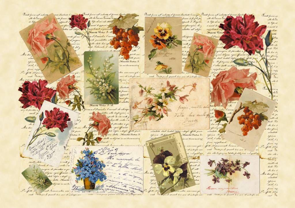 Антикварные марки открытки, картинках