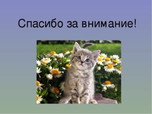 https://ds04.infourok.ru/uploads/ex/0078/0003e48f-13fdd9e4/310/img30.jpg