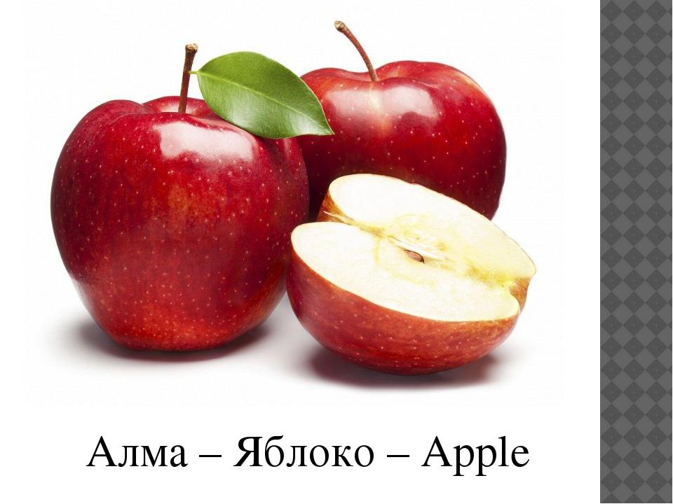 Алма – Яблоко – Apple