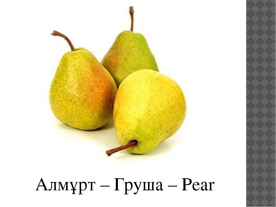 Алмұрт – Груша – Pear