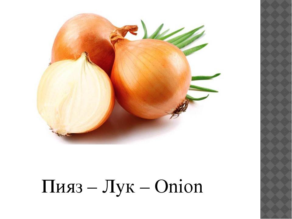 Пияз – Лук – Onion