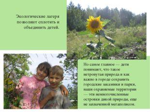 Экологические лагеря позволяют сплотить и объединить детей. Но самое главное