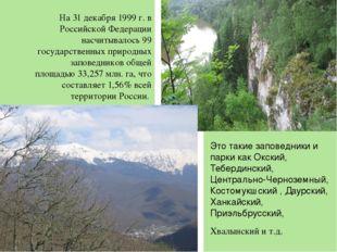 На 31 декабря 1999 г. в Российской Федерации насчитывалось 99 государственны