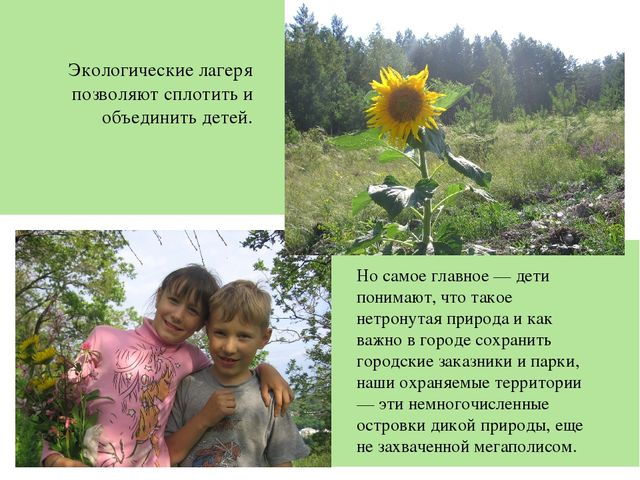 Экологические лагеря позволяют сплотить и объединить детей. Но самое главное...