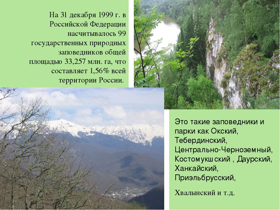 На 31 декабря 1999 г. в Российской Федерации насчитывалось 99 государственны...