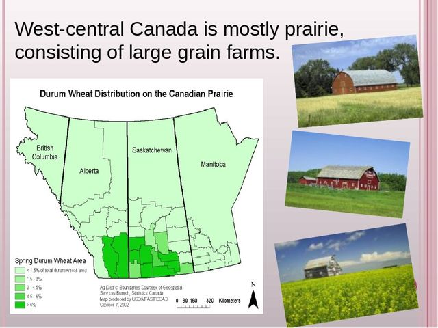 why is the canadian government ignoring the needs of saskatchewan farmers The main beneficiaries of government support are canadian dairy, poultry and egg producers, who set their own prices and are protected from most foreign competition by prohibitively high tariffs.