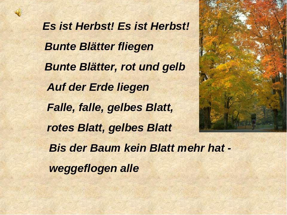 Слово стихи на немецком