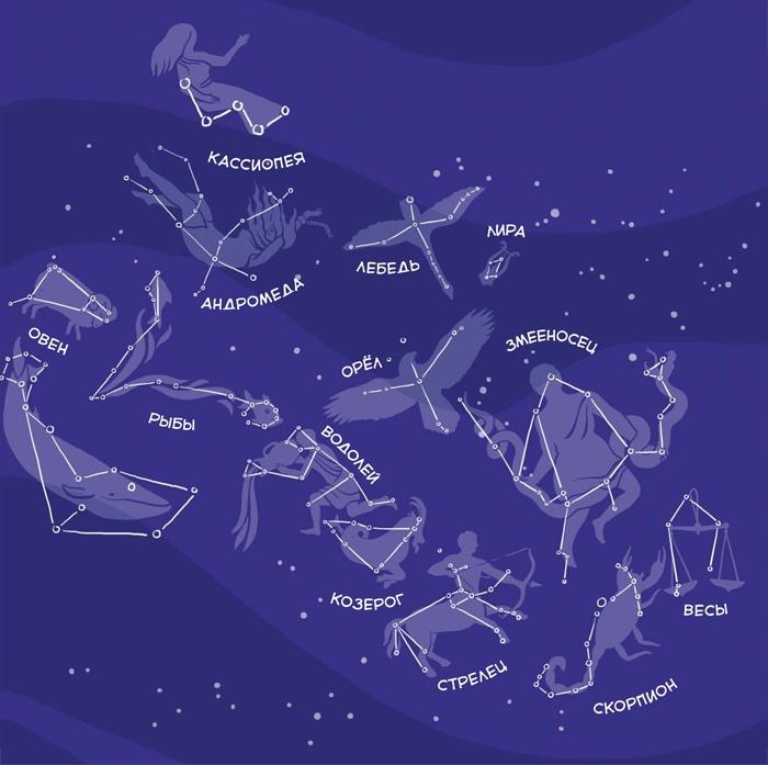 привлекательны картинка звездного неба с созвездиями истинное
