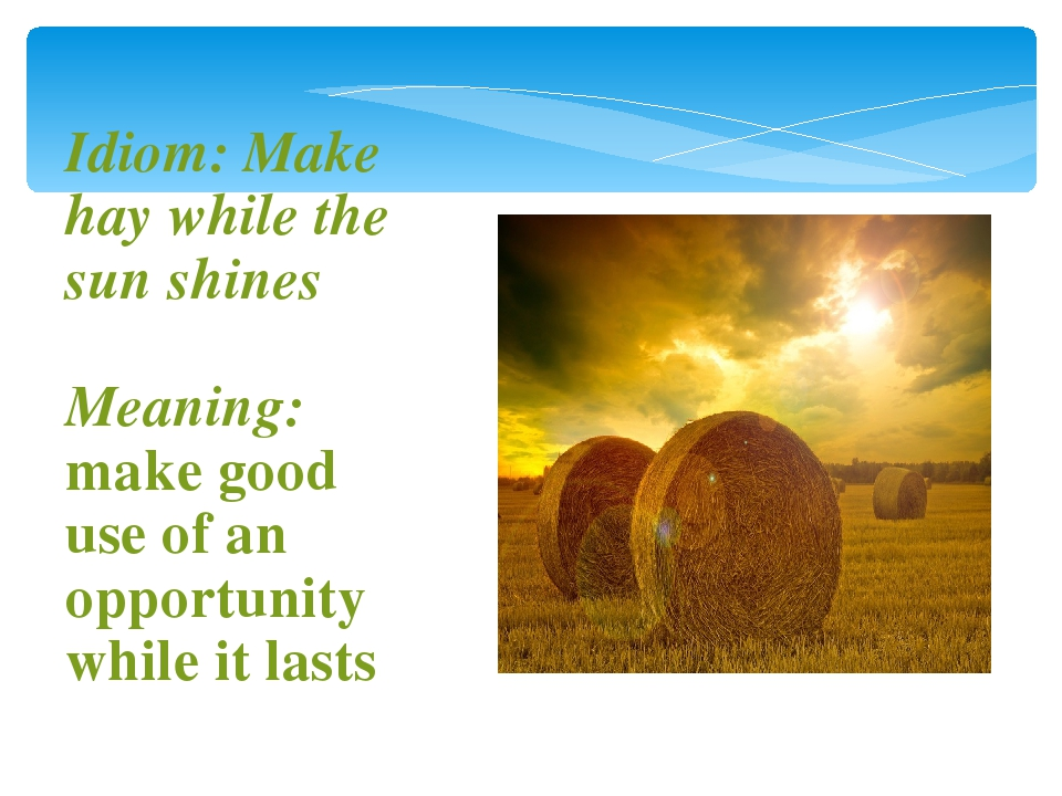 make hay while sun shines essay