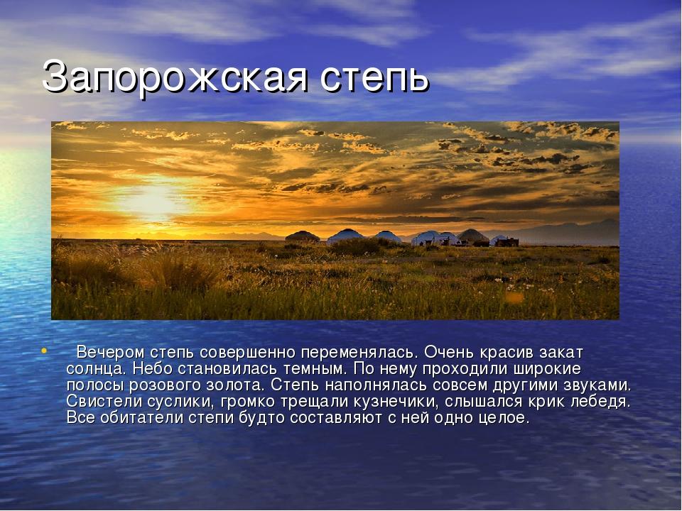 Запорожская степь Вечером степь совершенно переменялась. Очень красив закат...