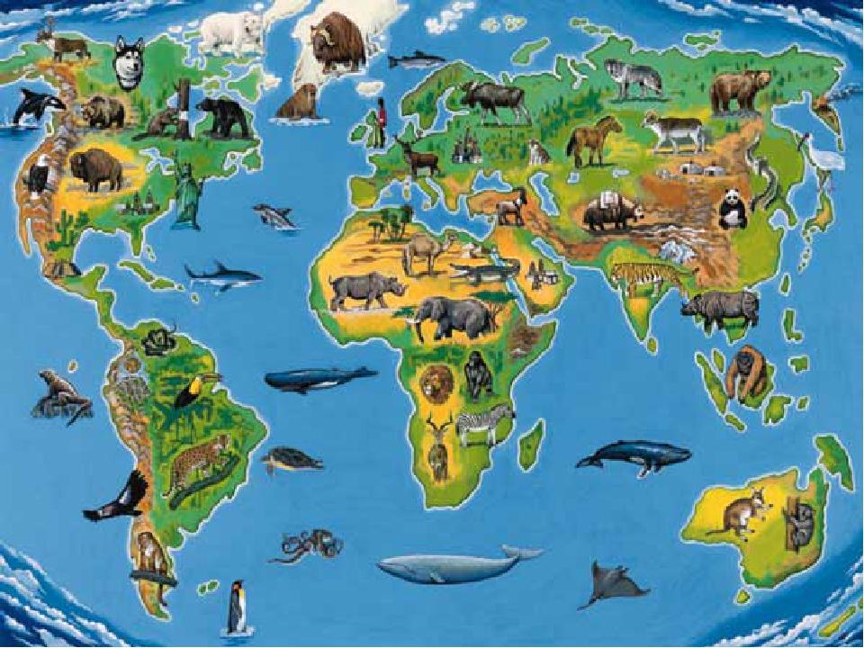 Фото с картой мира где указаны обитание животных