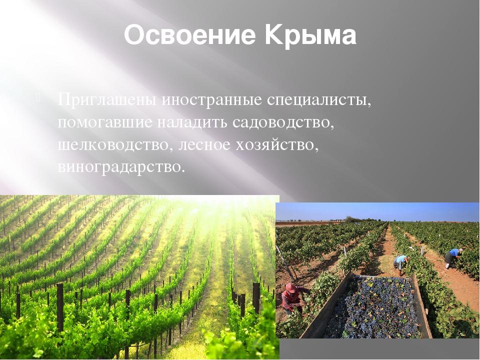 Освоение Крыма Приглашены иностранные специалисты, помогавшие наладить садово...