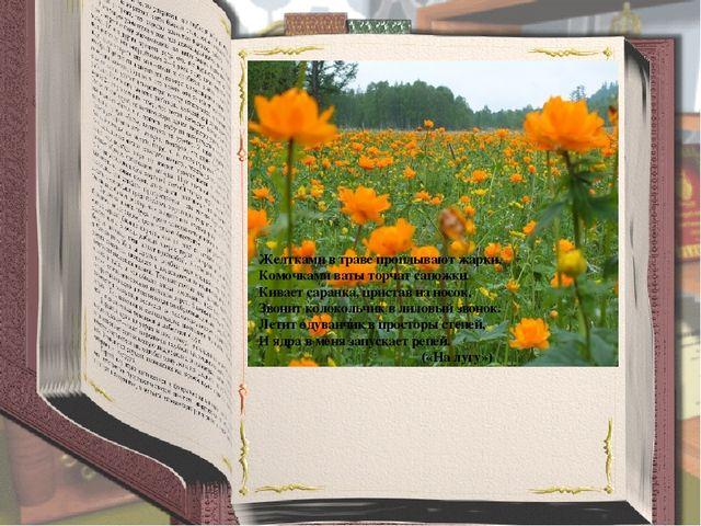 Желтками в траве проплывают жарки, Комочками ваты торчат сапожки Кивает сара...
