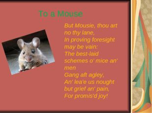 But Mousie, thou art no thy lane, In proving foresight may be vain: The best-