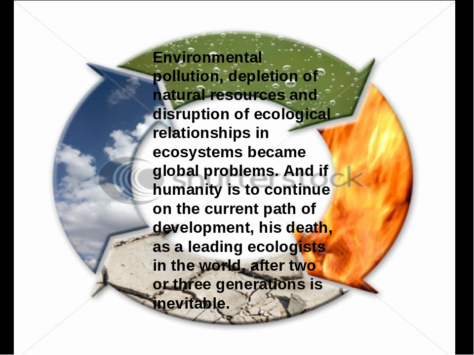 environmental depletion essay